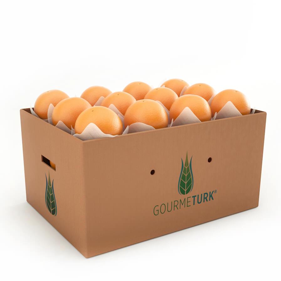 Gourmeturk taze washington portakalı
